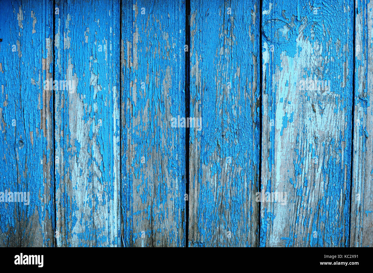 Texture of shabby wooden planks with peeling blue paint rustic