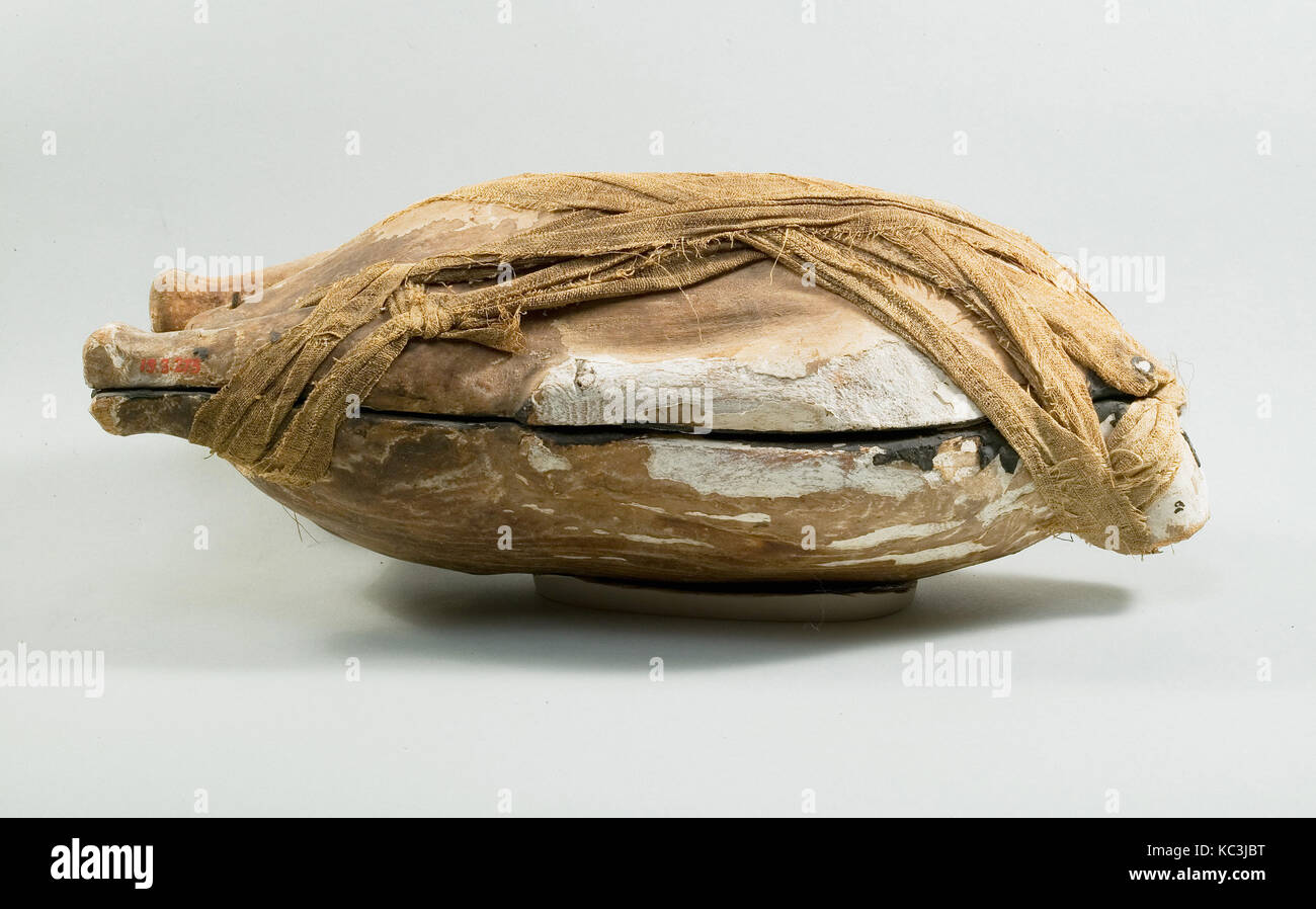 Food Case Probably Containing a Preserved Duck, ca. 1550–1479 B.C - Stock Image