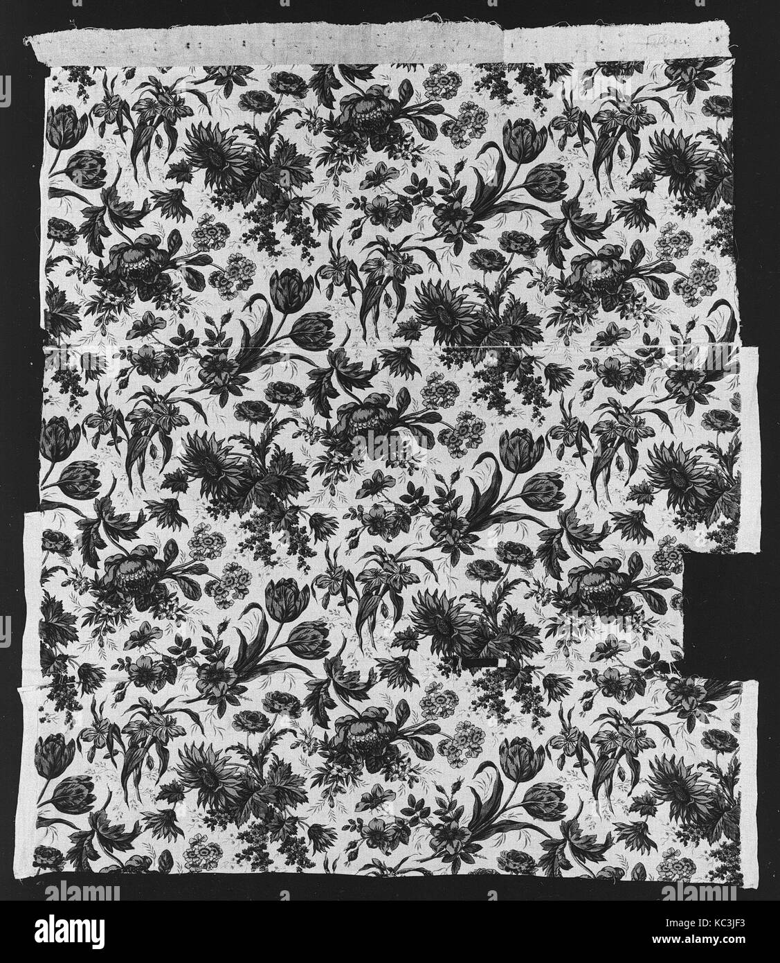 Panel, ca. 1820s, British, Cotton, L. 38 1/4 x W. 35 inches (loom), Textiles-Printed - Stock Image