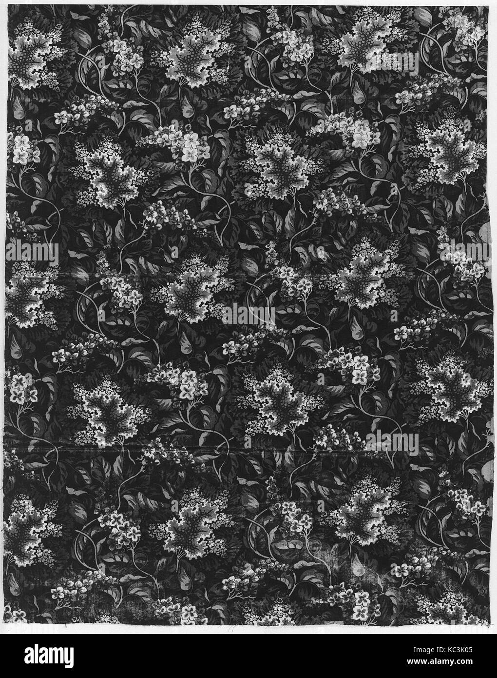 Piece, 1800–1810, British, Cotton, L. 38 1/4 x W. 27 inches, Textiles-Printed - Stock Image