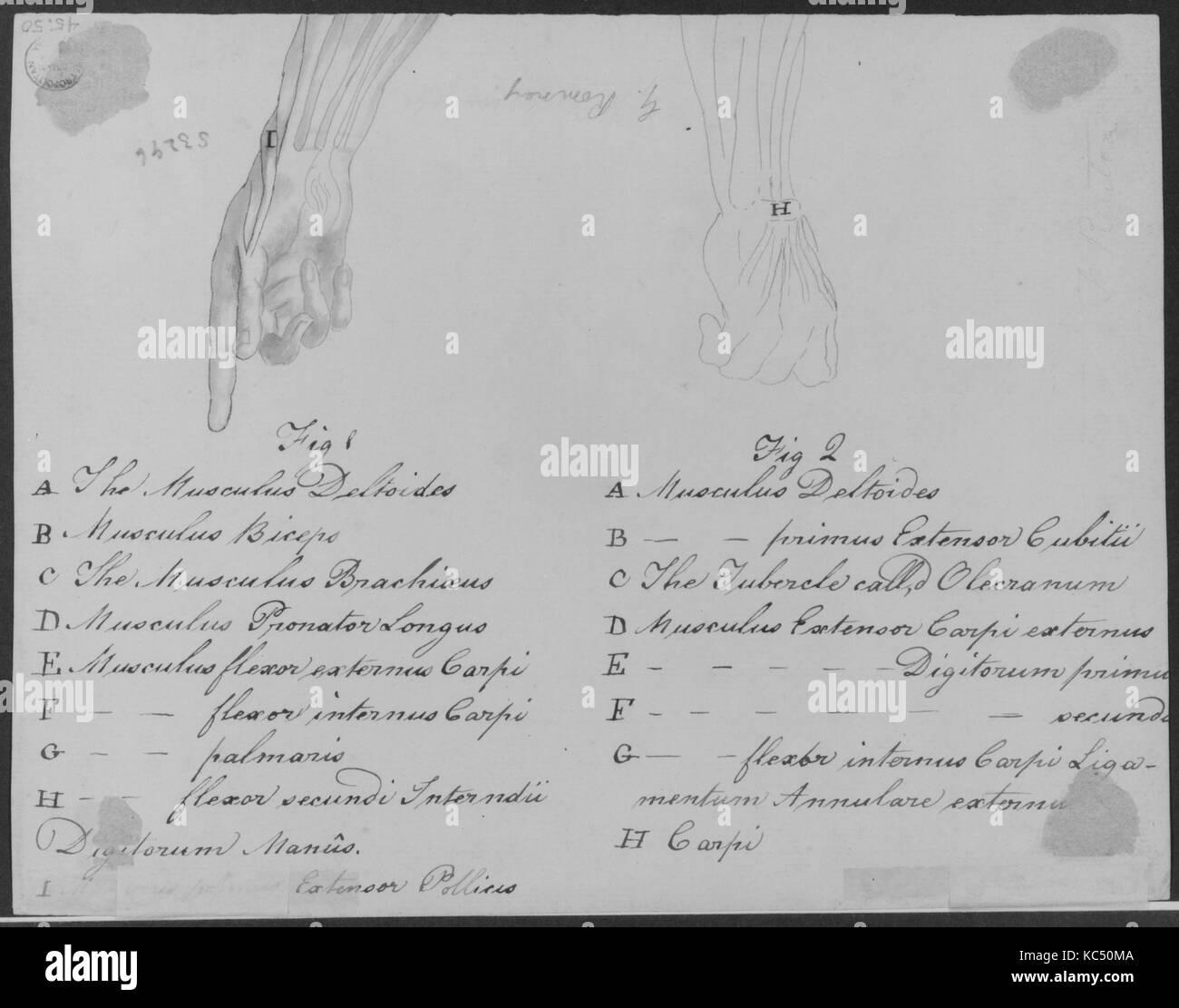 L'Art de Tourner, ou de faire en perfection toutes sortes d'ouvrages au tour, 1749 - Stock Image