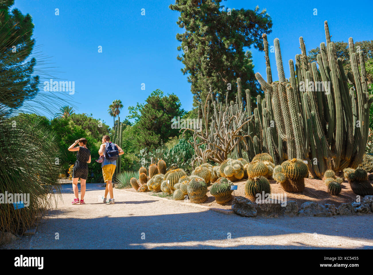 Valencia Spain Botanical Garden, A Young Couple Visiting The Jardin  Botanico Walk Past A Section Of The Desert Plants Area, Valencia.