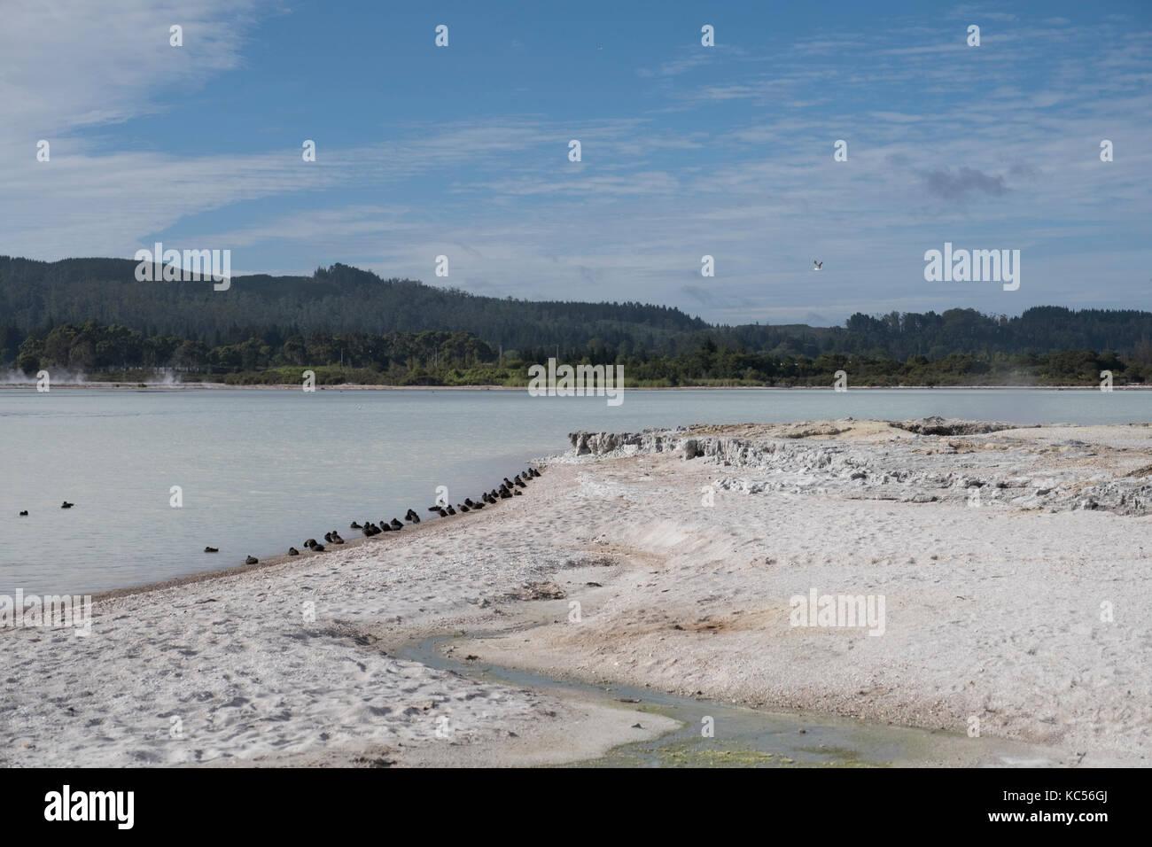 New Zealand - Stock Image