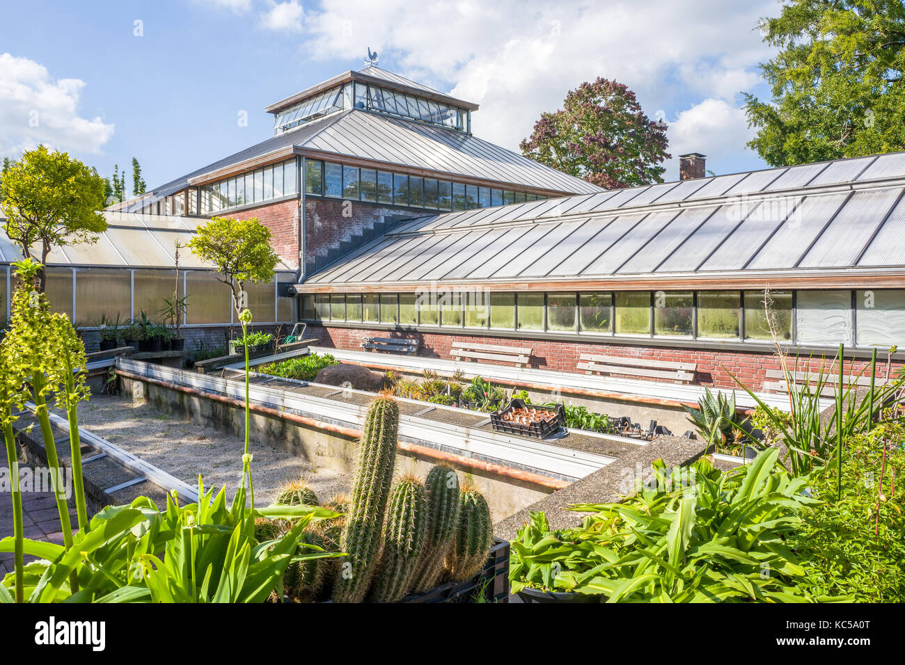 NETHERLANDS   LEIDEN   SEPTEMBER 23, 2017: Historic Greenhouse In The  Hortus Botanicus, Botanical Garden In Leiden, Netherlands.