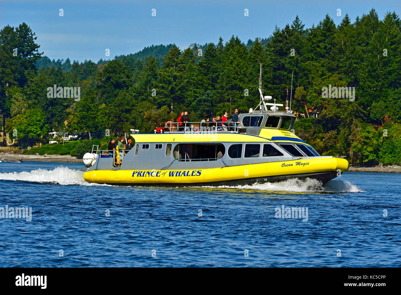 A side view of an eco tour whale watching vessel with it's load of tourists in search of a pod of killer whales - Stock Image