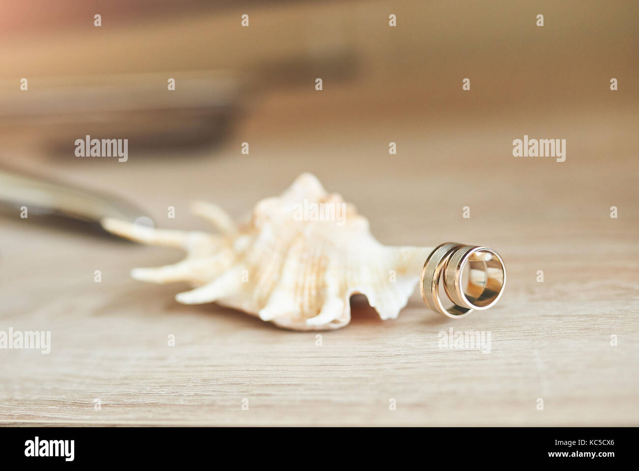 Wedding rings, shell and decoration - Stock Image