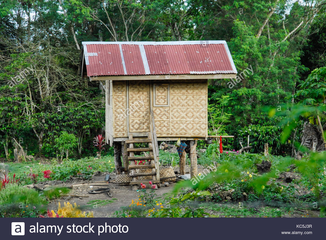 philippine traditional house