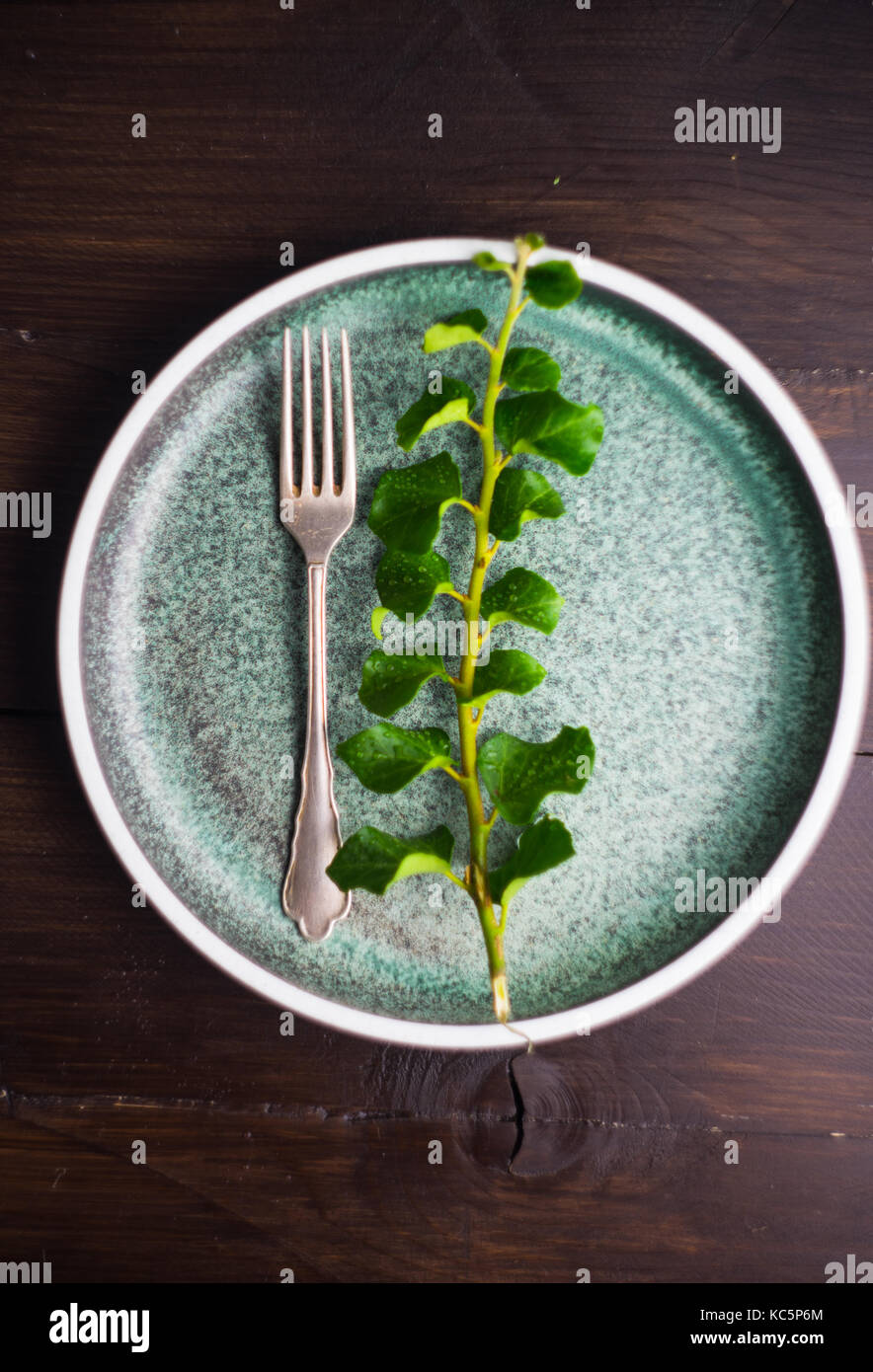 Rustic table setting with vintage ceramic plates and branch of ivy plant on dark old wooden table with copyspace & Rustic table setting with vintage ceramic plates and branch of ivy ...
