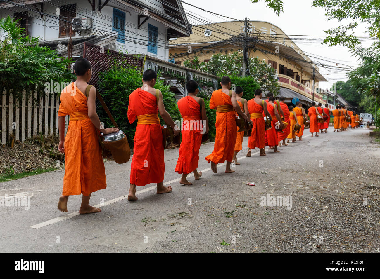 Buddhist monks in a line in Luang Prabang, Laos - Stock Image