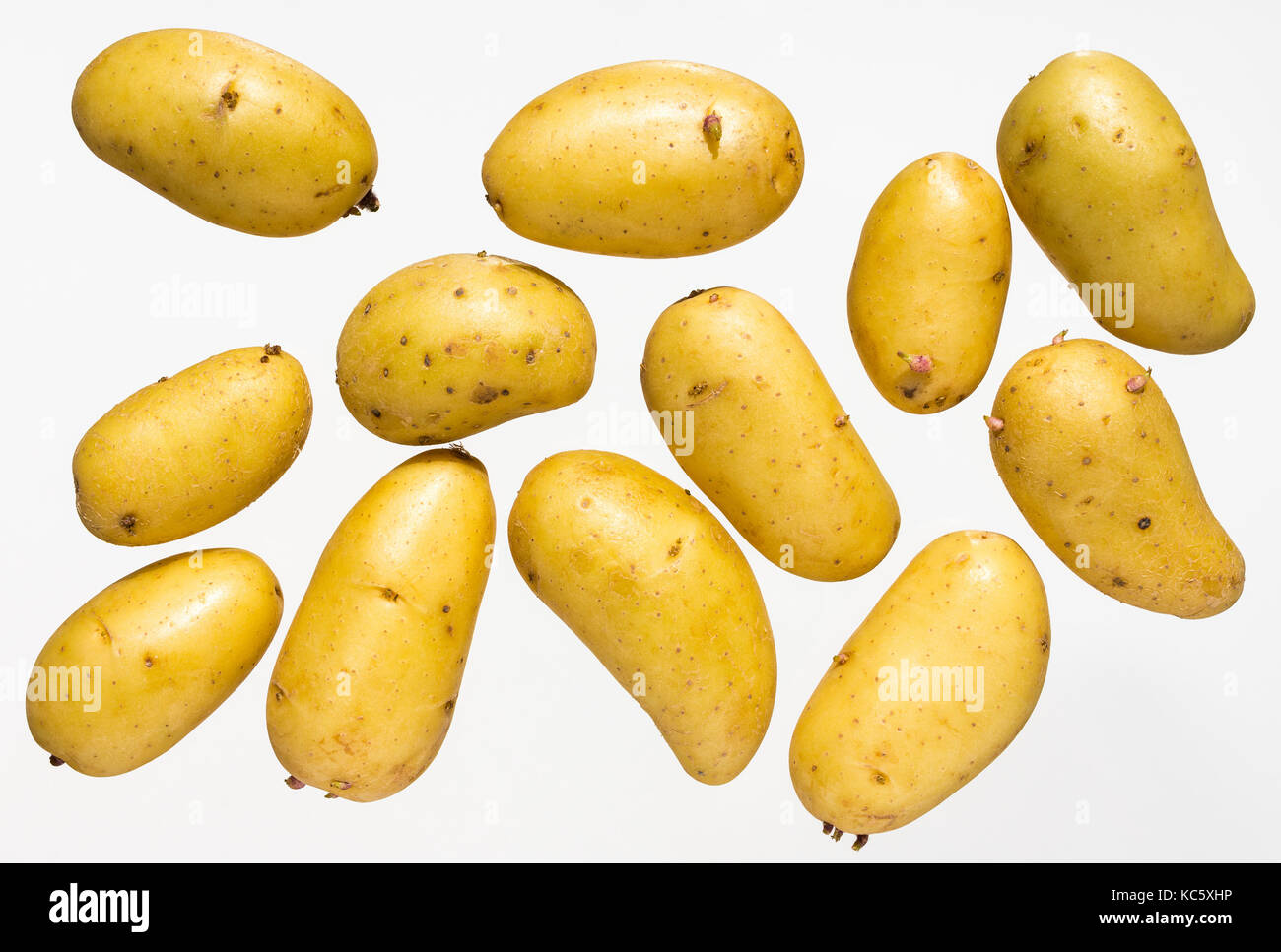 French new potatoes from the Beauce region. - Stock Image
