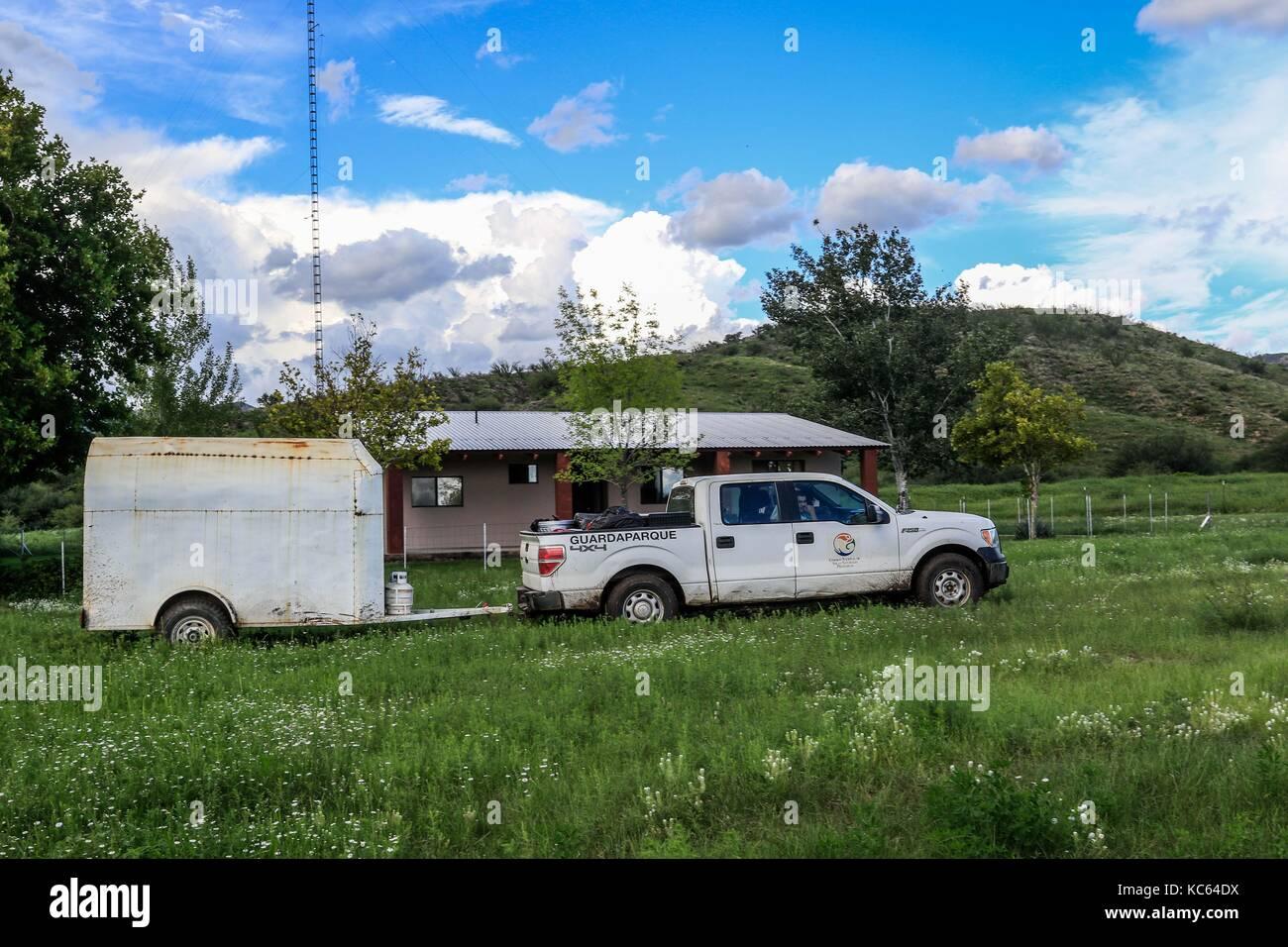Rancho la Volanta.   Expedition con fines científicos y conservacionistas. Alrededor de 50 personas (mex y - Stock Image