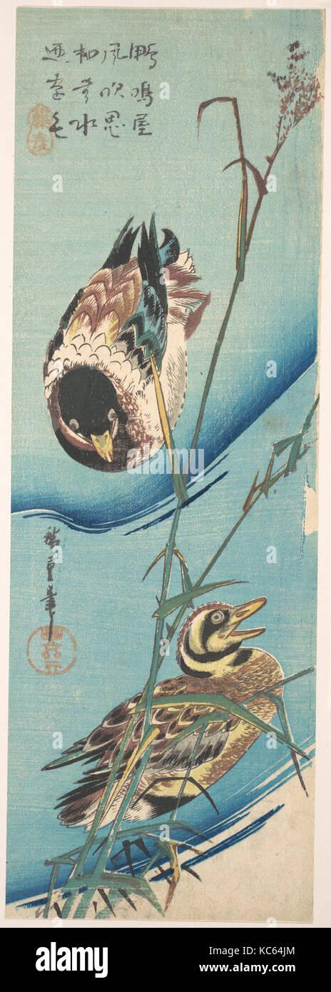 歌川広重画 雪中芦に鴨, Mallard Ducks and Snow-covered Reeds, Utagawa Hiroshige, ca. 1843 Stock Photo