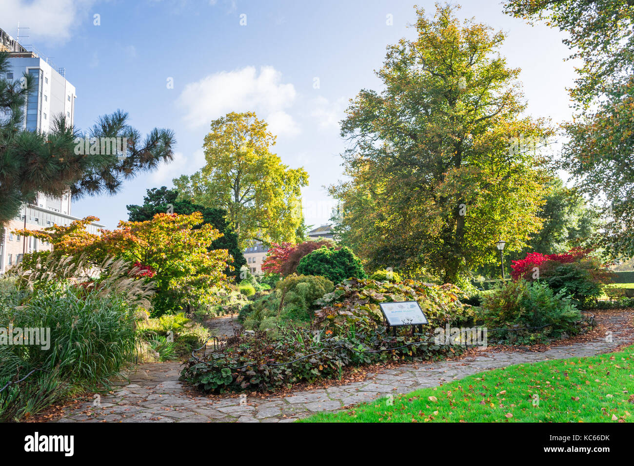 Andrews East Park during autumn in the city centre of Southampton, England, UK - Stock Image
