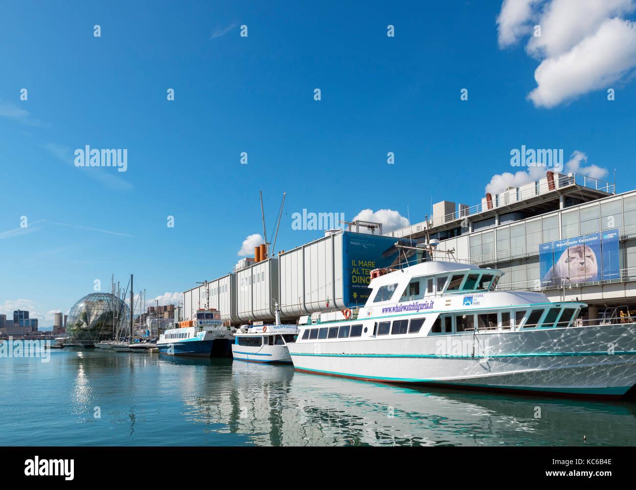 The Aquarium of Genoa, Old Port, Genoa, Liguria, Italy - Stock Image