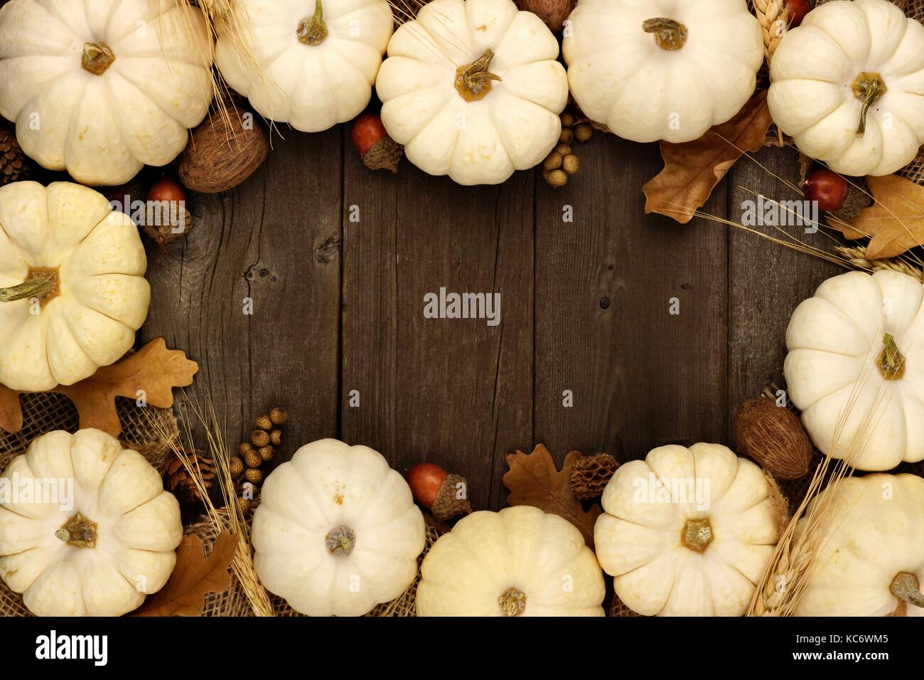 Autumn frame of white pumpkins and brown leaves over a rustic wood background - Stock Image