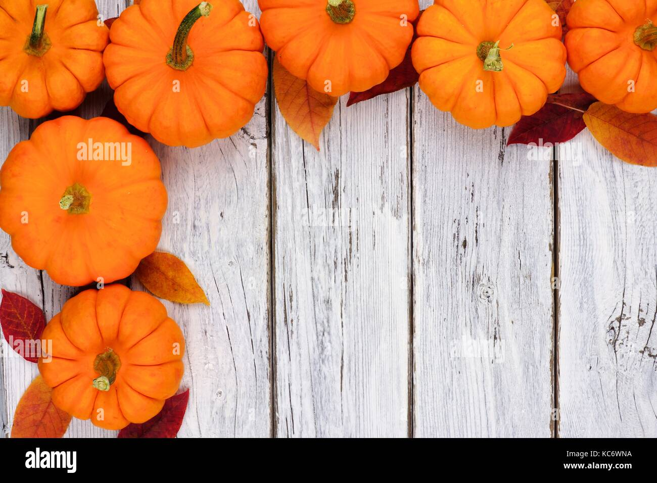 Autumn leaves and pumpkin corner border over a rustic white wood background - Stock Image