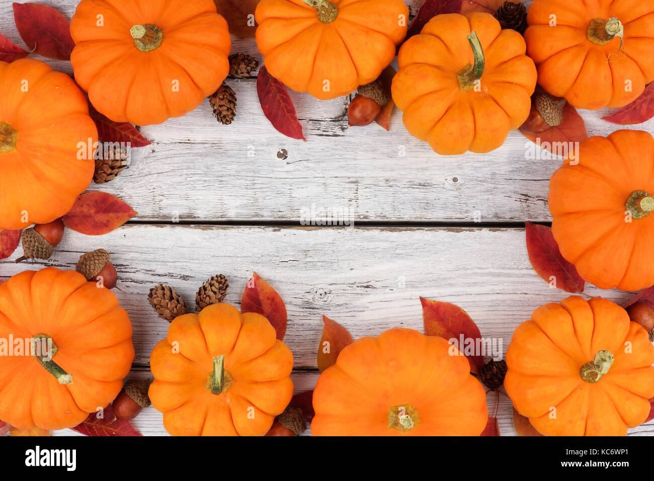 Autumn leaves and pumpkin frame over a rustic white wood background ...