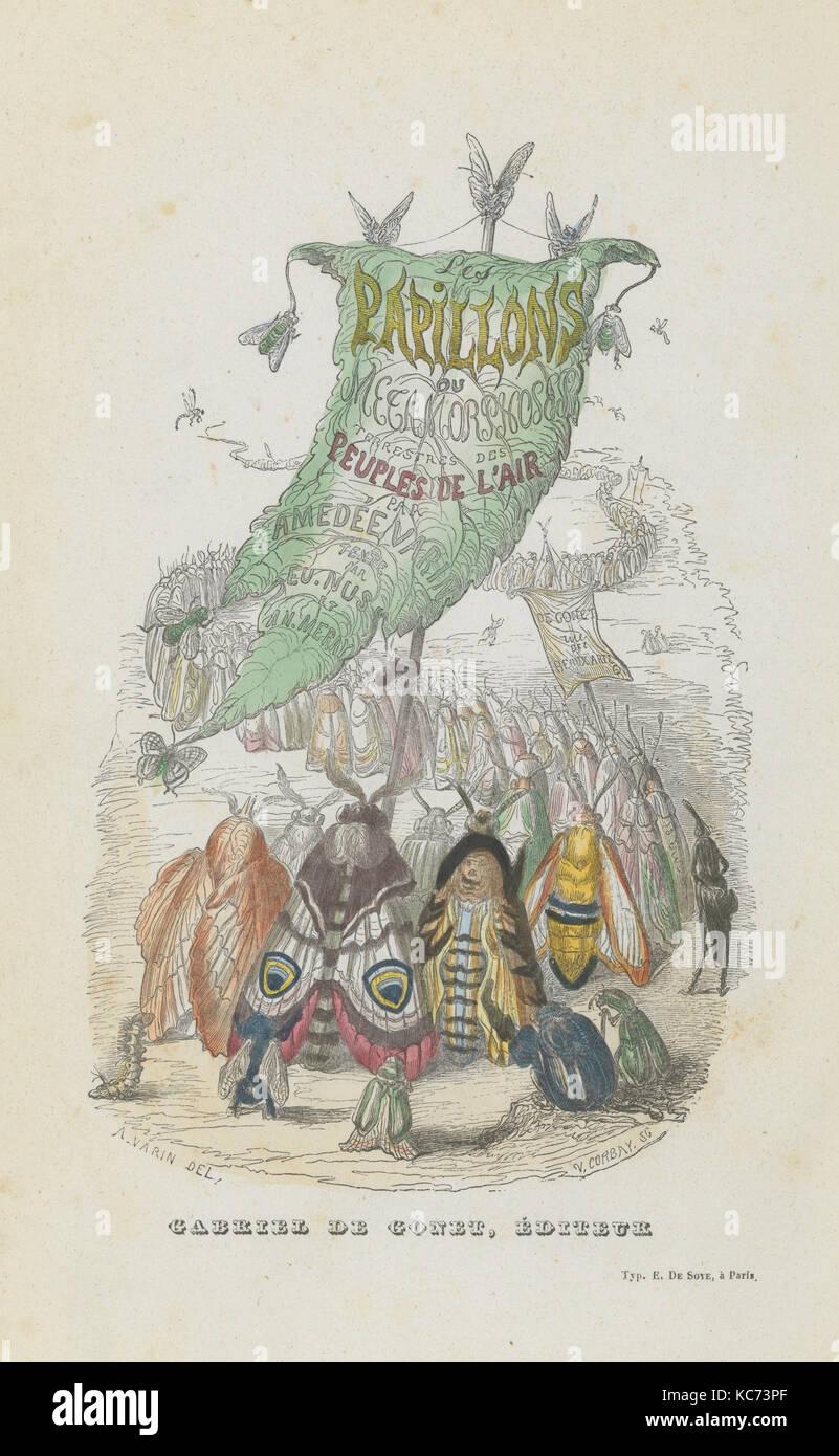 Les Papillons: Métamorphoses terrestres des peuples de l'air, 1852 - Stock Image
