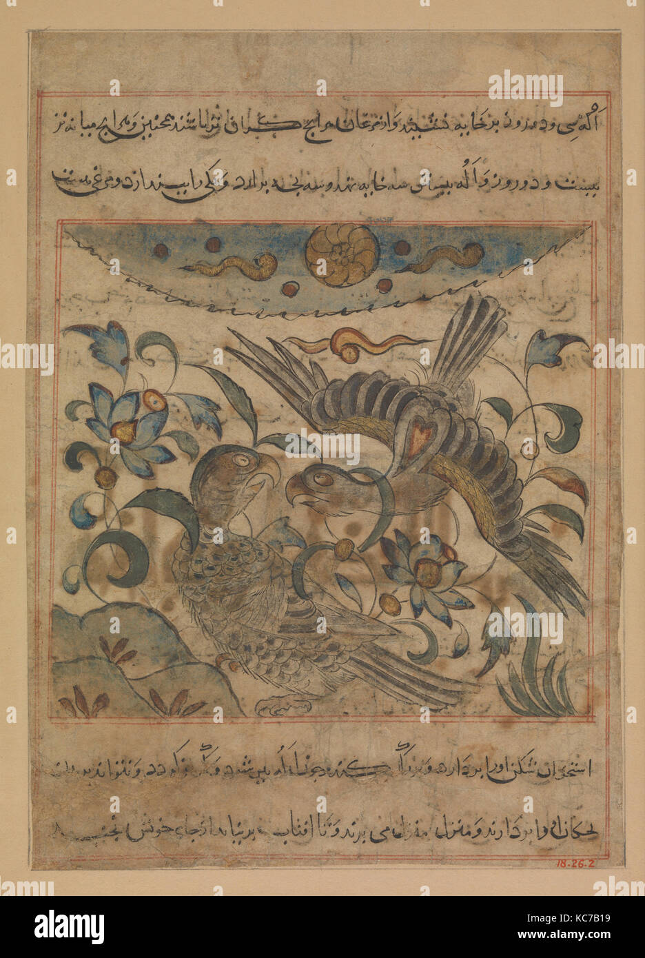 'Pair of Eagles', Folio from a Manafi' al-Hayawan (On the Usefulness of Animals) of Ibn Bakhtishu', - Stock Image