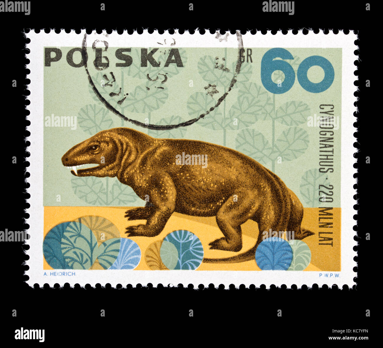 Postage stamp from Poland depicting a cynognathus - Stock Image