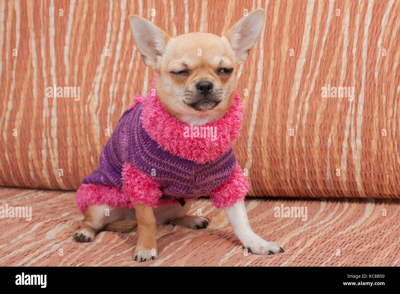 Sweater Dress Stock Photos & Sweater Dress Stock Images - Alamy