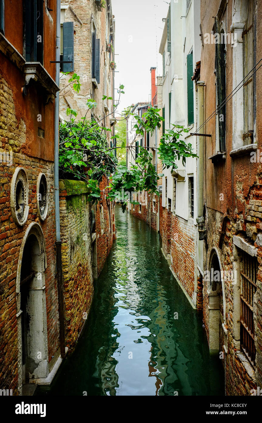 A quiet back water canal in Venice with narrow gaps between the houses - Stock Image