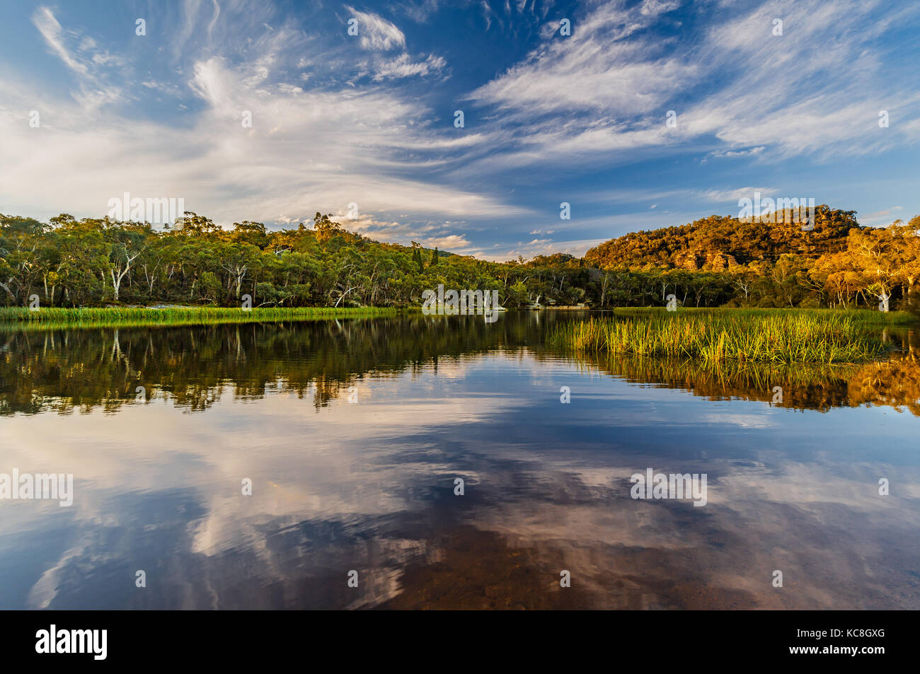 Evening mood on Dunns Swamp in Wollemi National Park. - Stock Image
