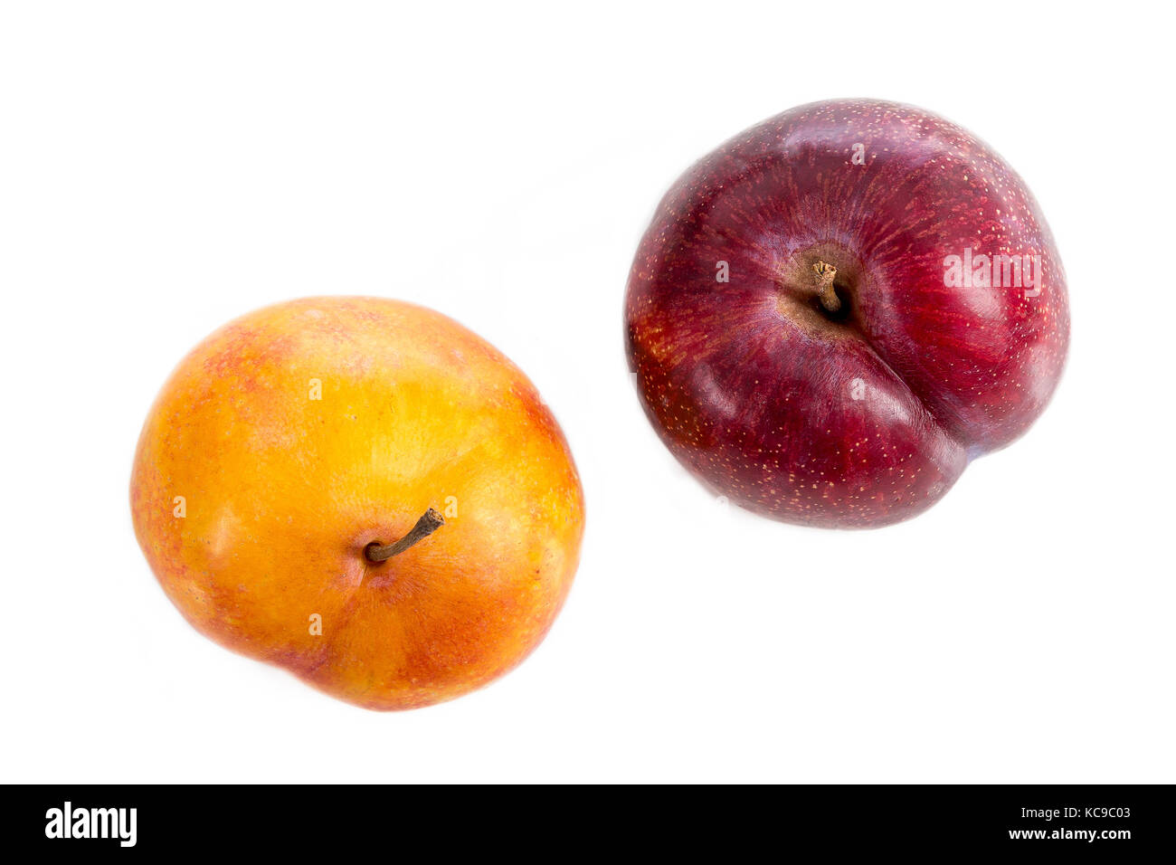 Red and Yellow plum on a white background top view - Stock Image