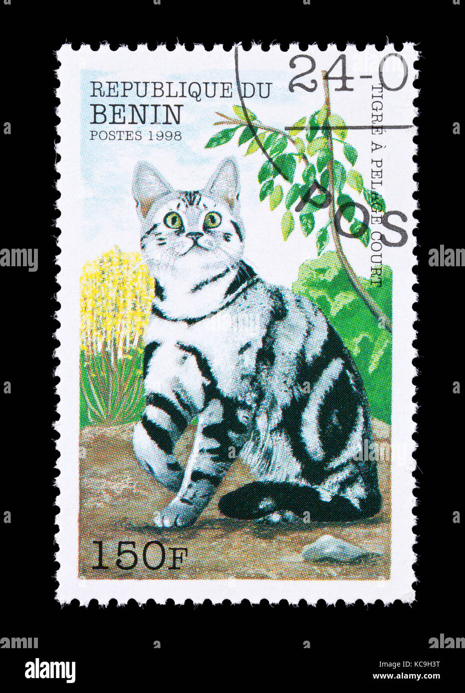 Postage stamp from Benin depicting an striped shorthairn breed of house cat. - Stock Image