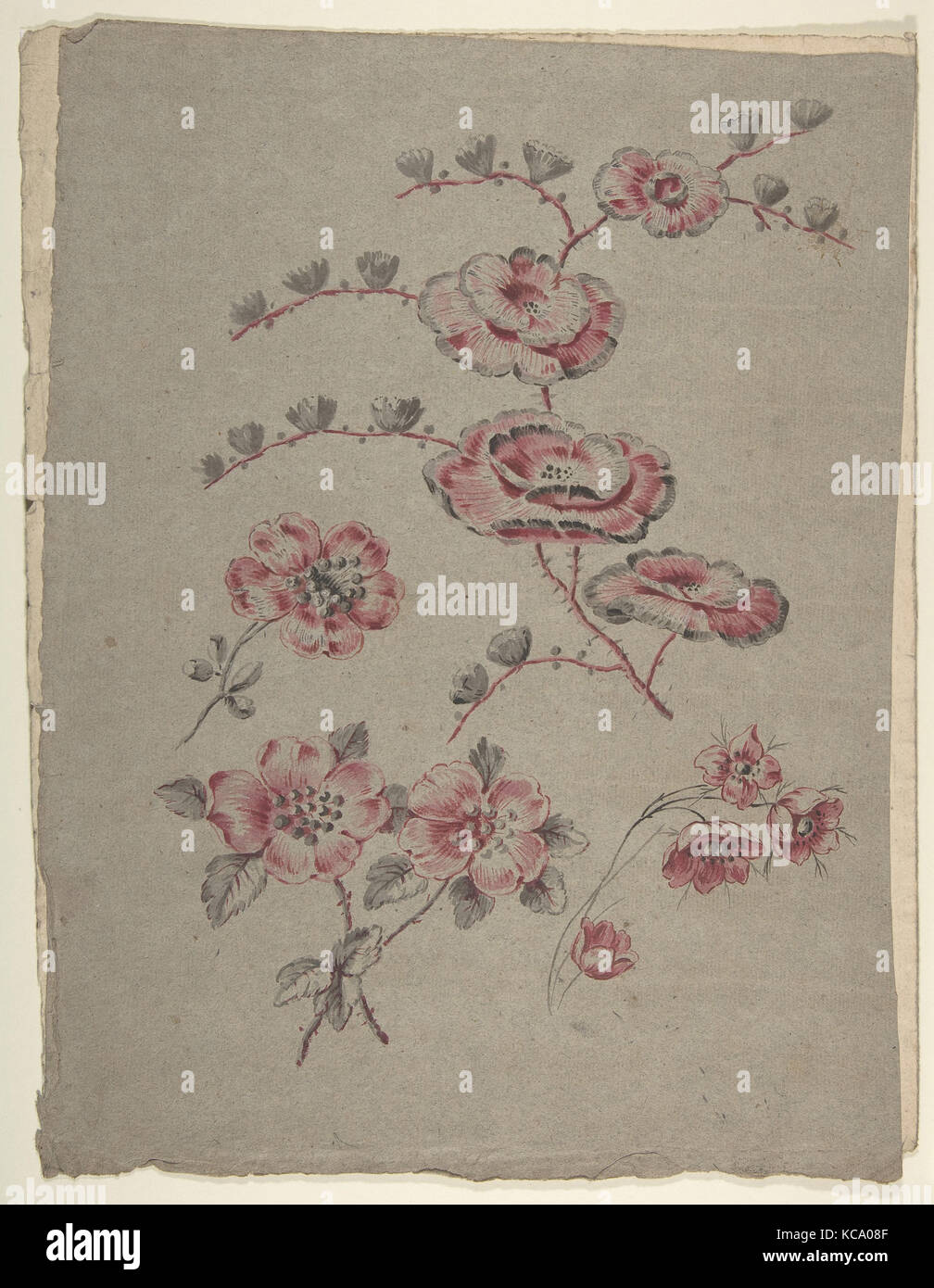 Pink Flower Pattern, Anonymous, French, 19th century, 19th century - Stock Image