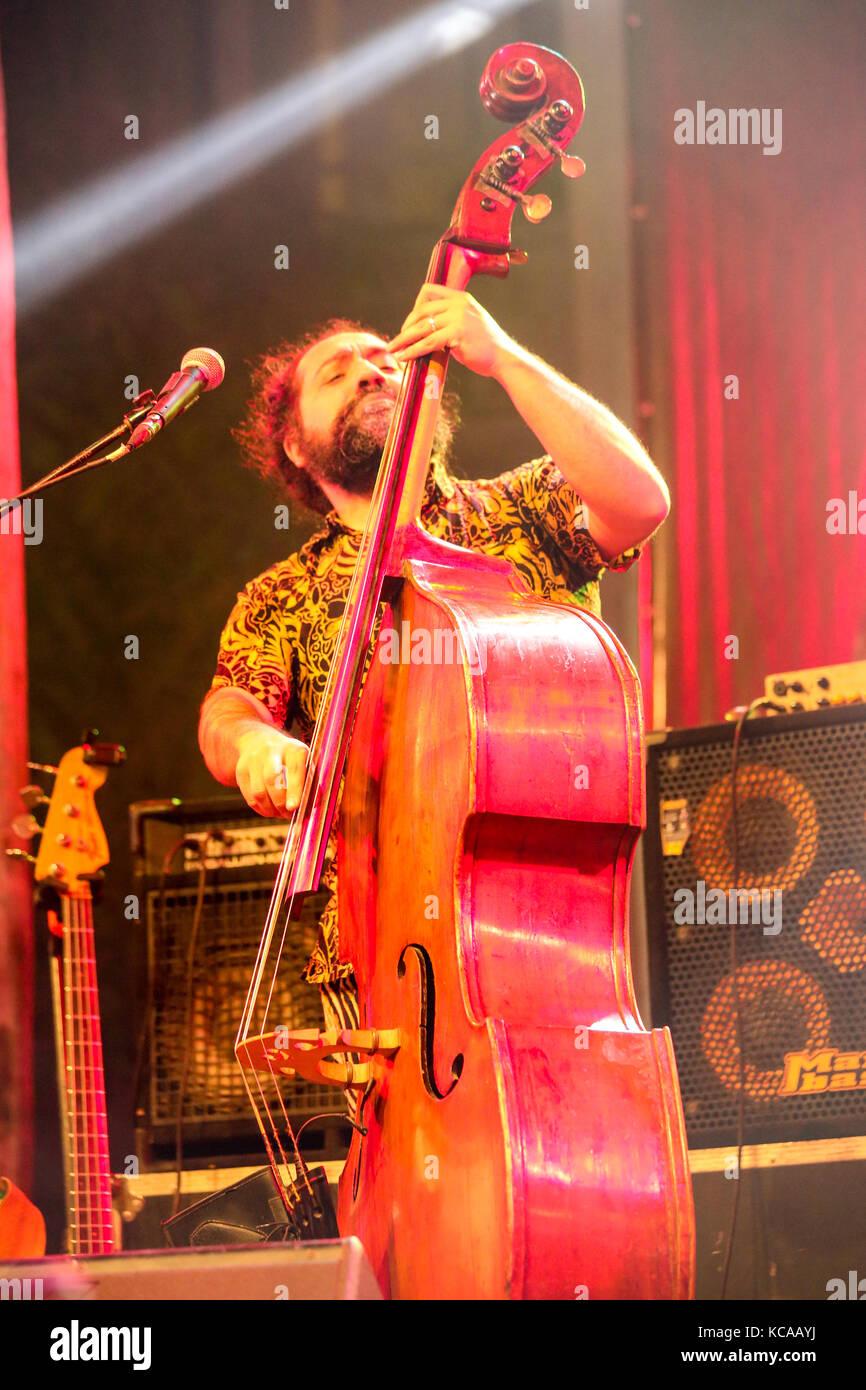 A Jazz Musician Plays bass in Cairo jazz festival, Egypt Stock Photo