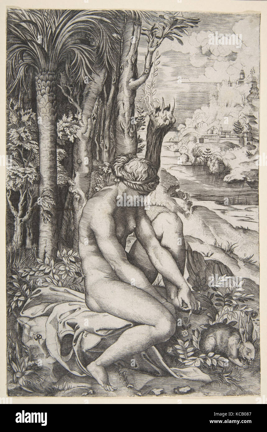 Venus removing a thorn from her left foot while seated on a cloth next to trees, a hare lower right, Marco Dente, - Stock Image