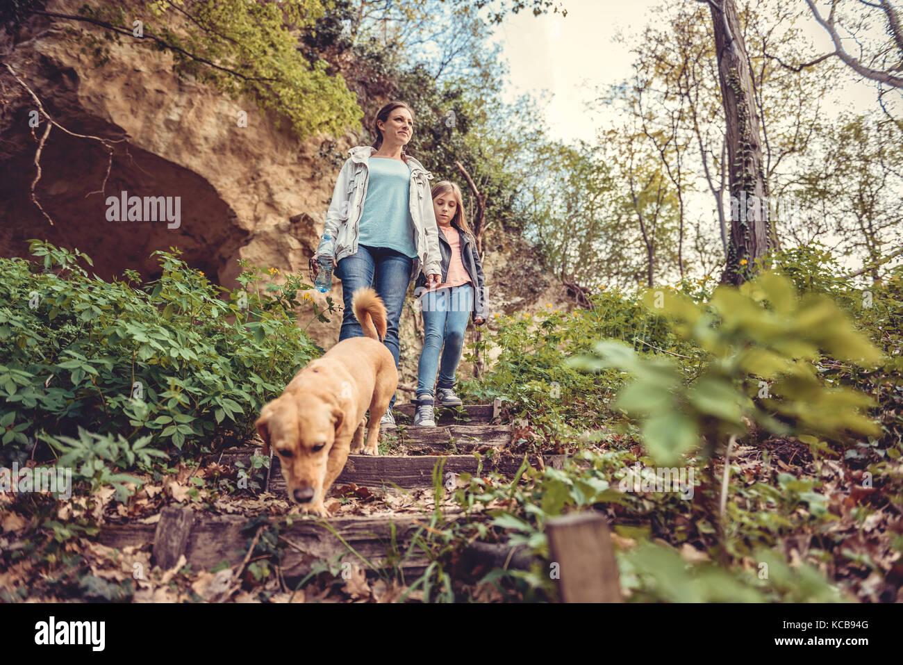 Mother and daughter walking in forest with a small yellow dog - Stock Image