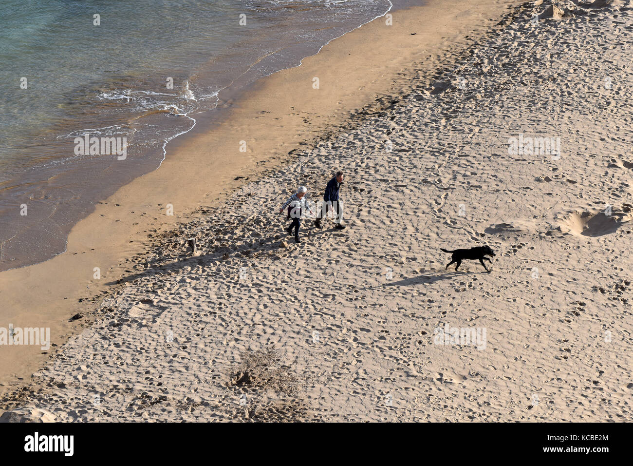 Couple with dog on beach at Barafundle Bay in Pembrokeshire, West Wales, Uk Stock Photo