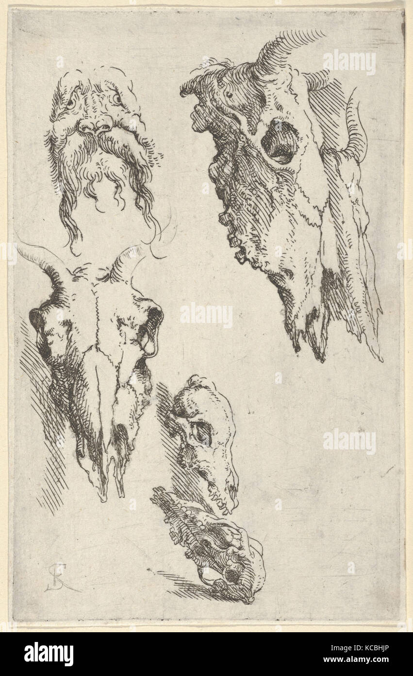 Three ox skulls, two horse skulls, and a grotesque head, study for 'Democritus in Meditation', Salvator - Stock Image