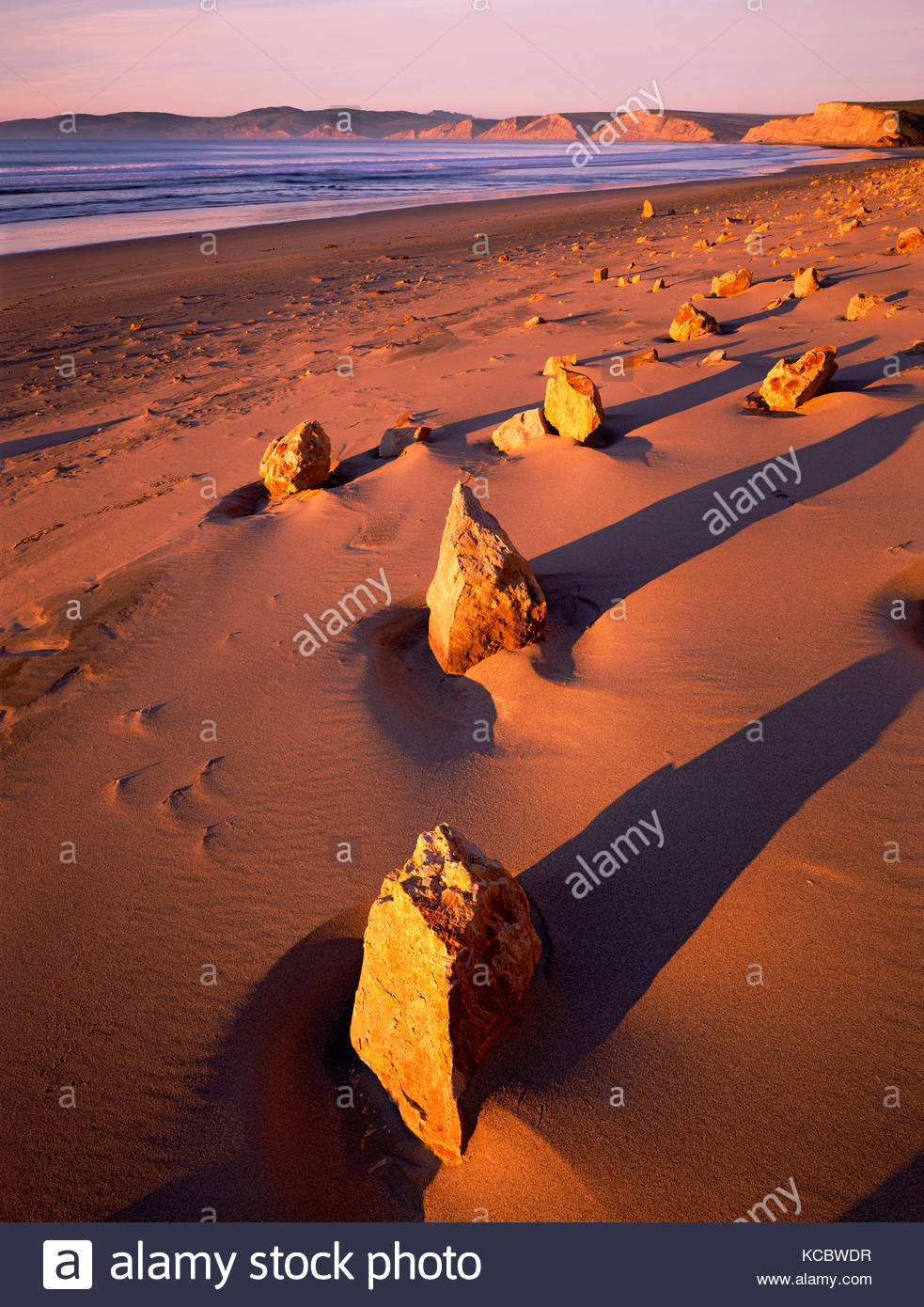 Dawn Light onSandstone Rocks,Point Reyes National Seashore, California - Stock Image