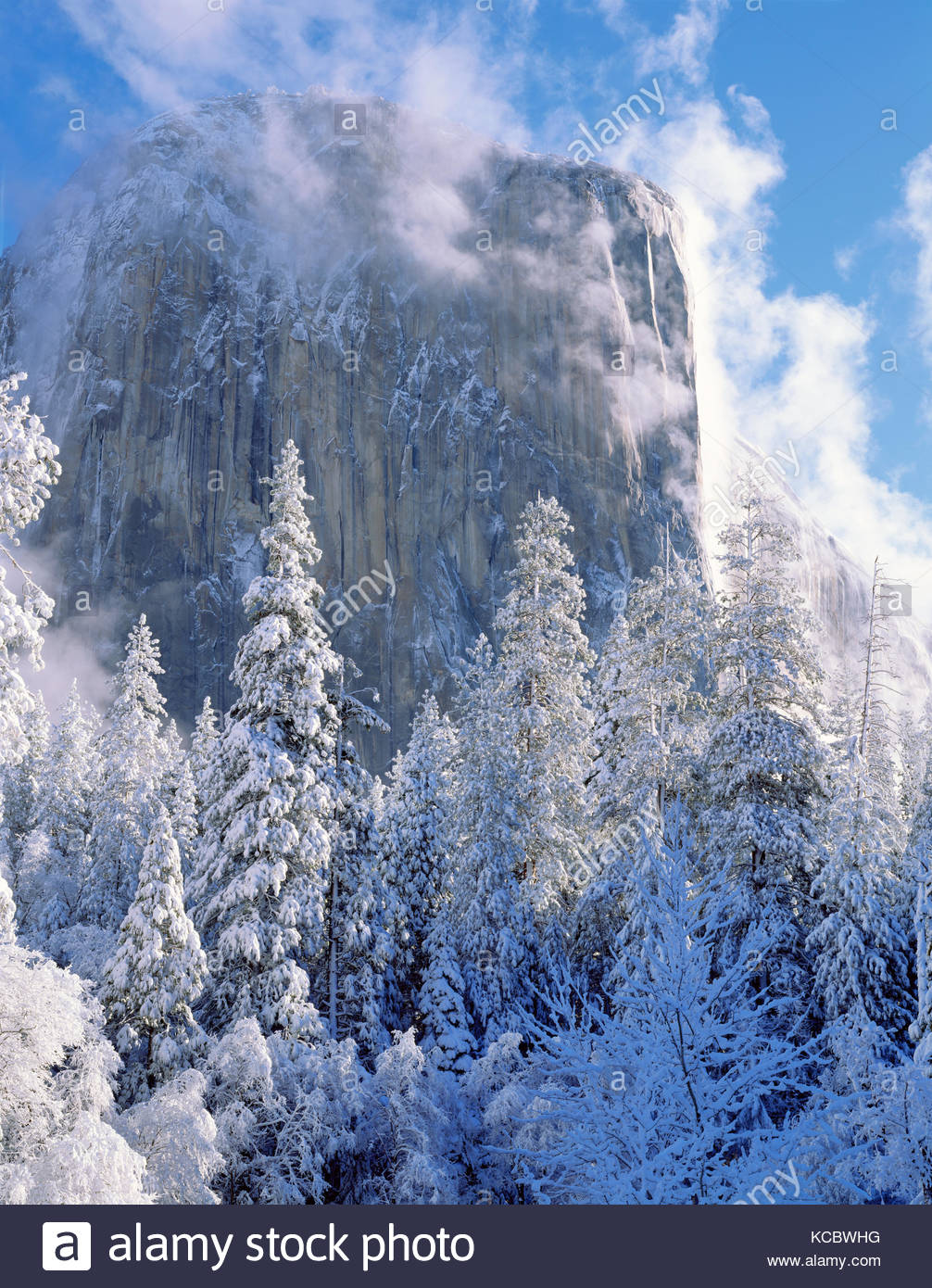 El Capitan after Snowstorm,Yosemite National Park, California - Stock Image