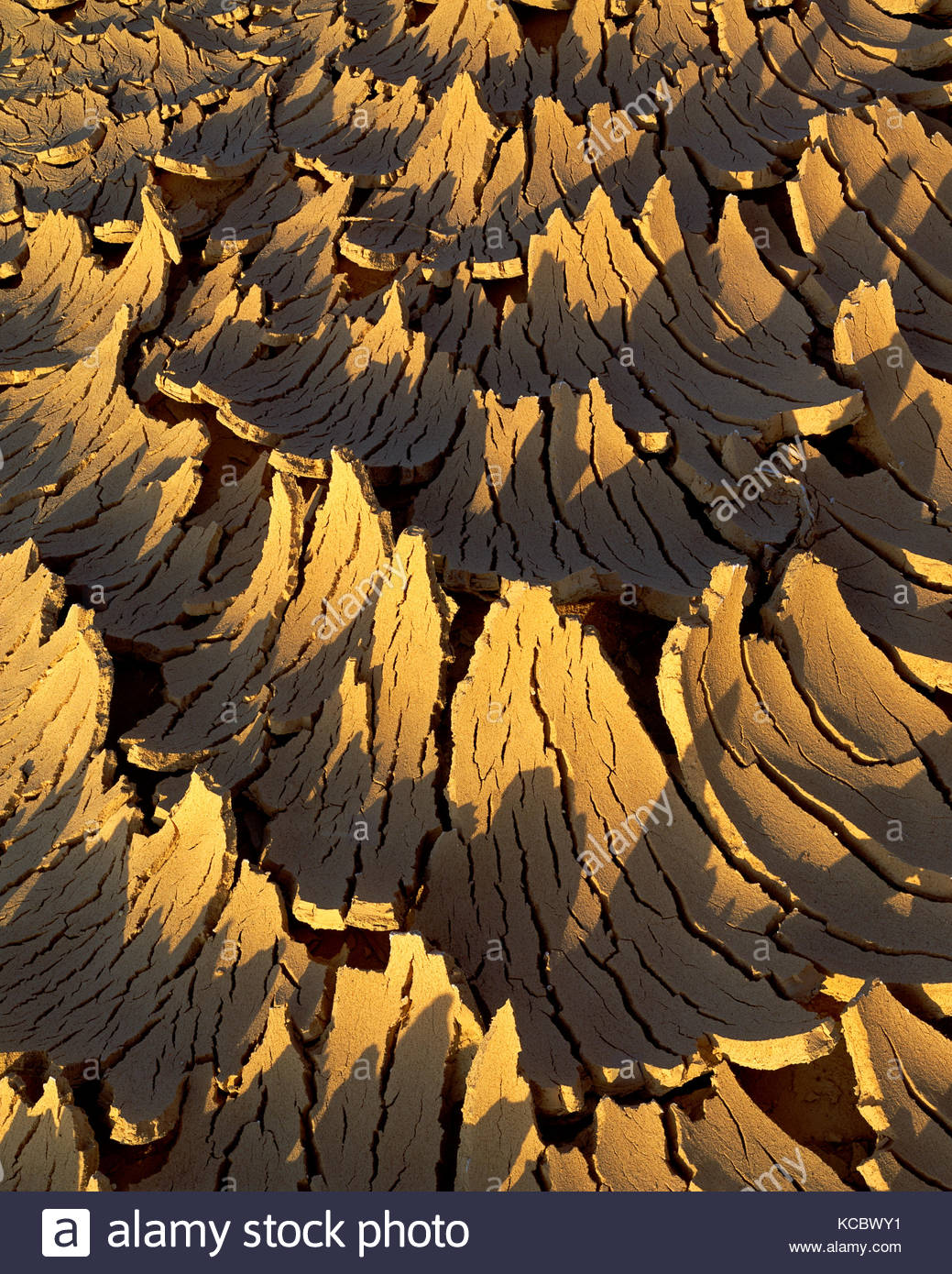 Dried Desert Wash at Sunset, Death Valley National Park, California - Stock Image