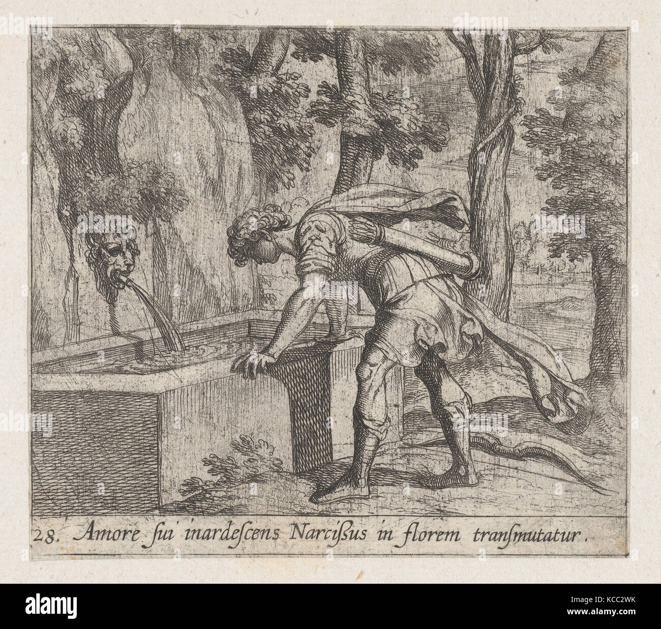 Plate 28: Narcissus at the Well (Amore fui inardescens Narcißus in florem transmutatur), from Ovid's 'Metamorphoses - Stock Image