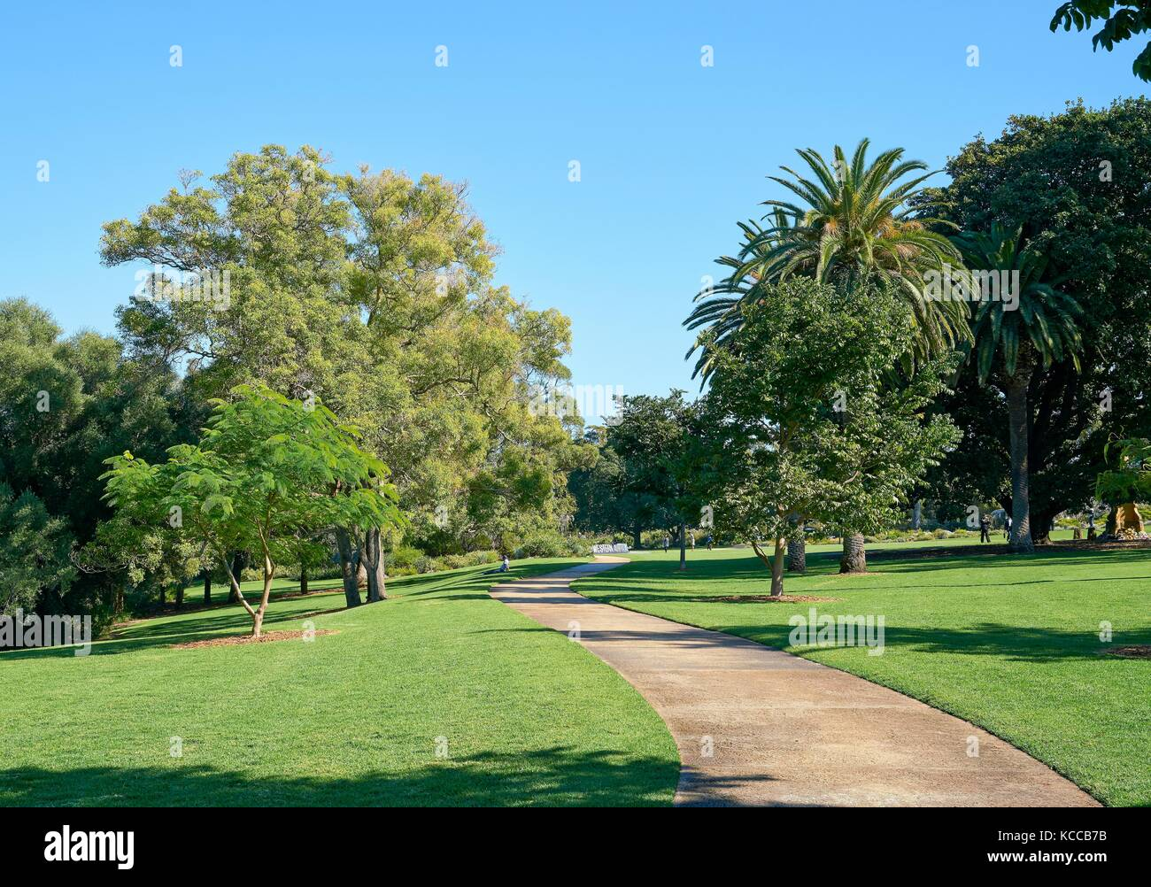 Australian Parks and Gardens Perth Stock Photo: 162541439
