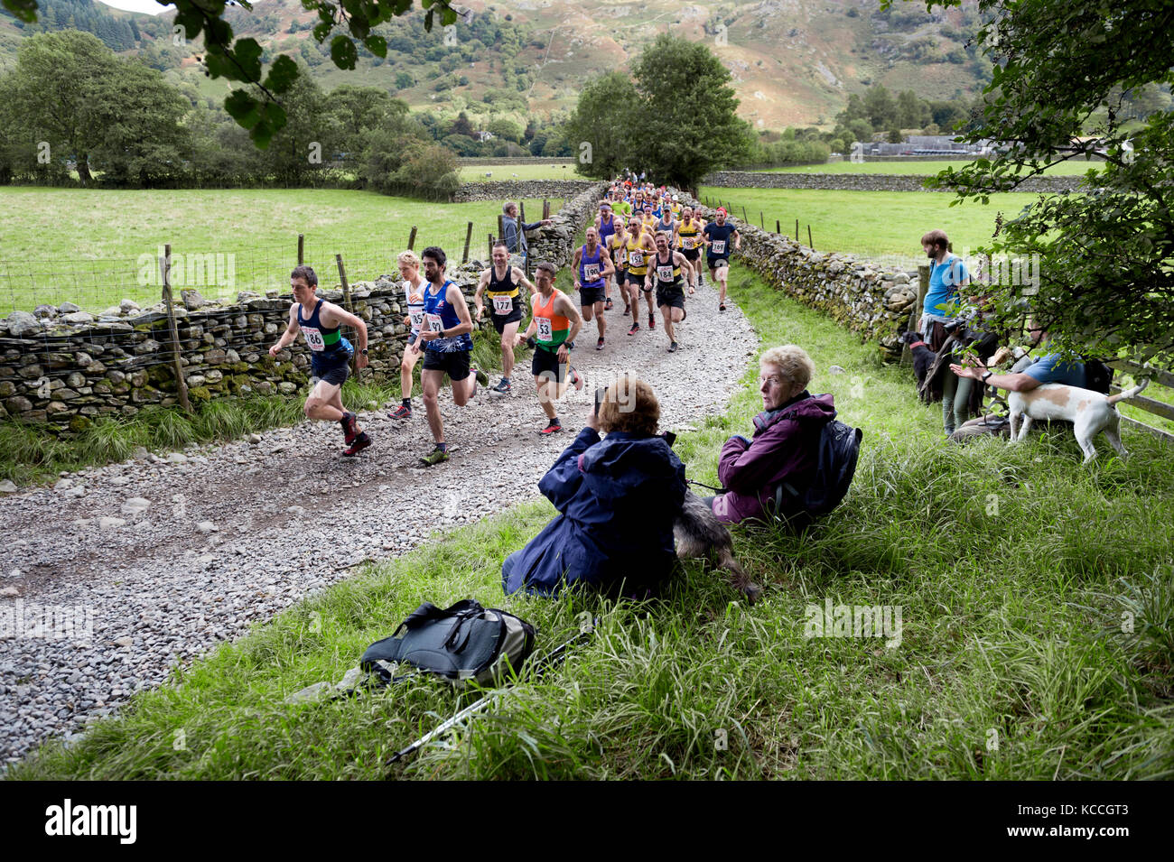 The start of the fell race, Borrowdale Shepherds Meet, Rosthwaite, Keswick, Cumbria, UK - Stock Image