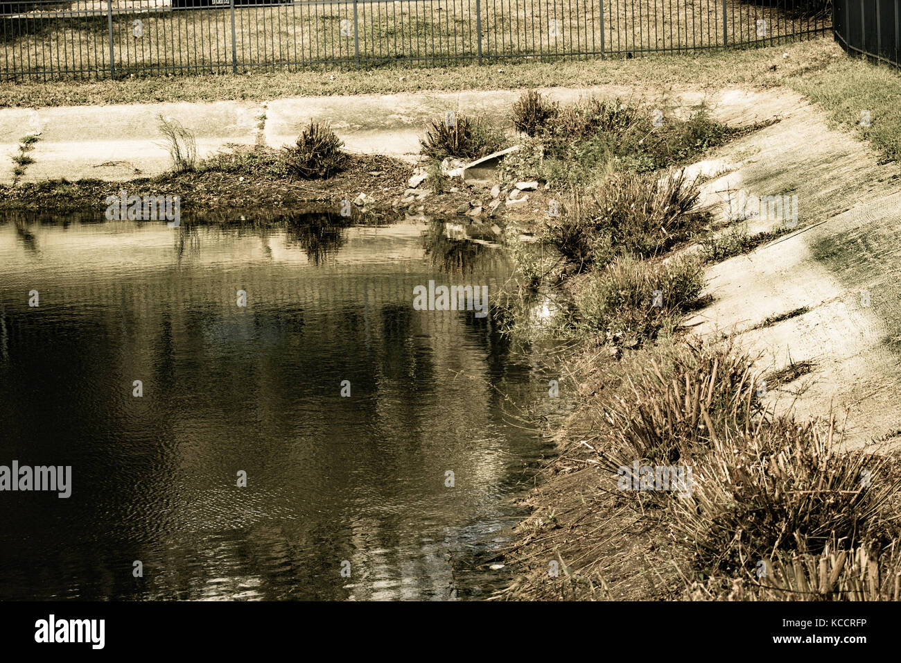 Creek - Stock Image