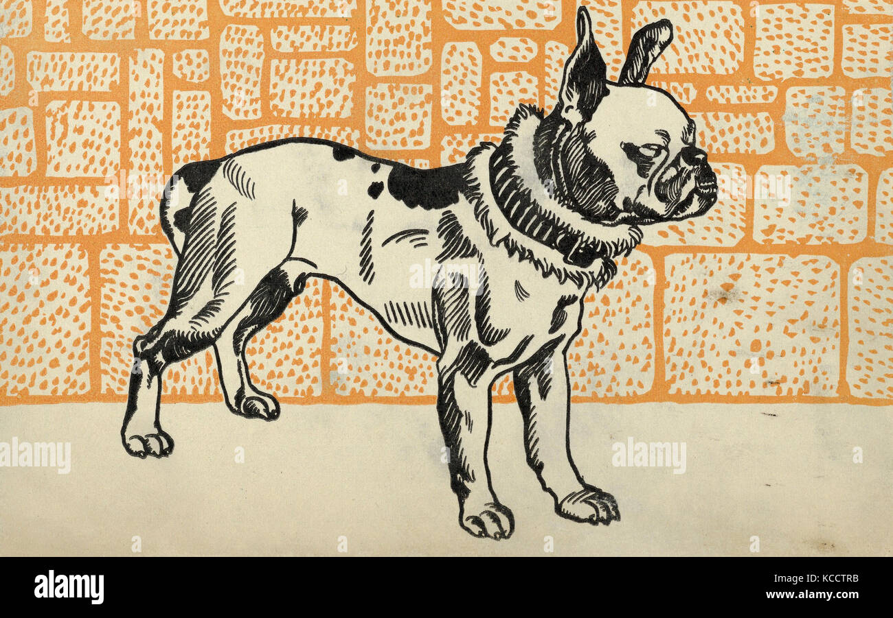 Drawings and Prints, Print, Pitbull Terrier, Artist, Publisher, Moriz Jung, Wiener Werkstätte, Austrian (born - Stock Image