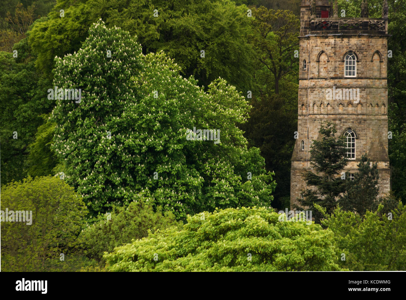 Culloden Tower, Richmond, North Yorkshire Stock Photo