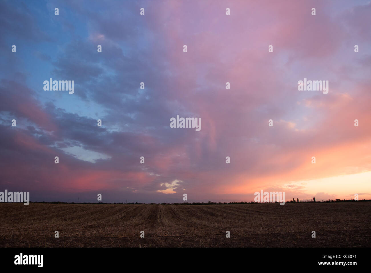 Colourful sunset over the fields - Stock Image