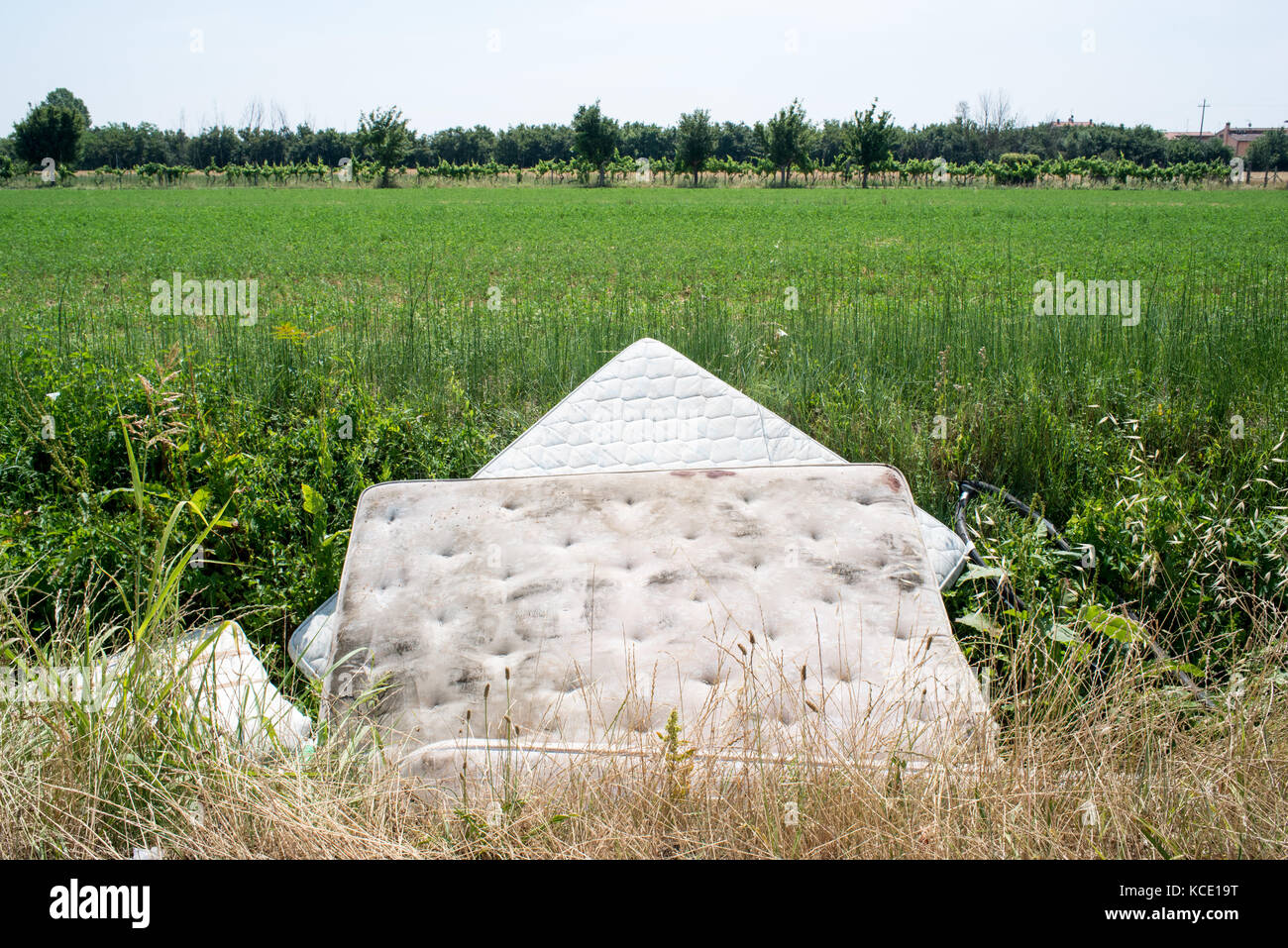 Abandoned mattresses in a green field on the outskirts of florence - Stock Image