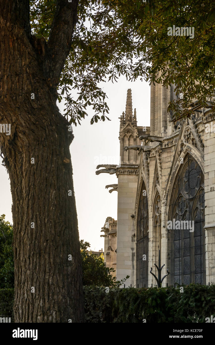 Detail view of the buttresses, pinnacles and gargoyles of the chancel of Notre-Dame de Paris cathedral at sunset. - Stock Image