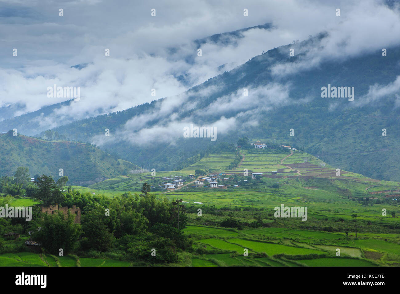Punakha Valley, Bhutan, is a fertile area of rice fields surrounded by steep mountains - Stock Image