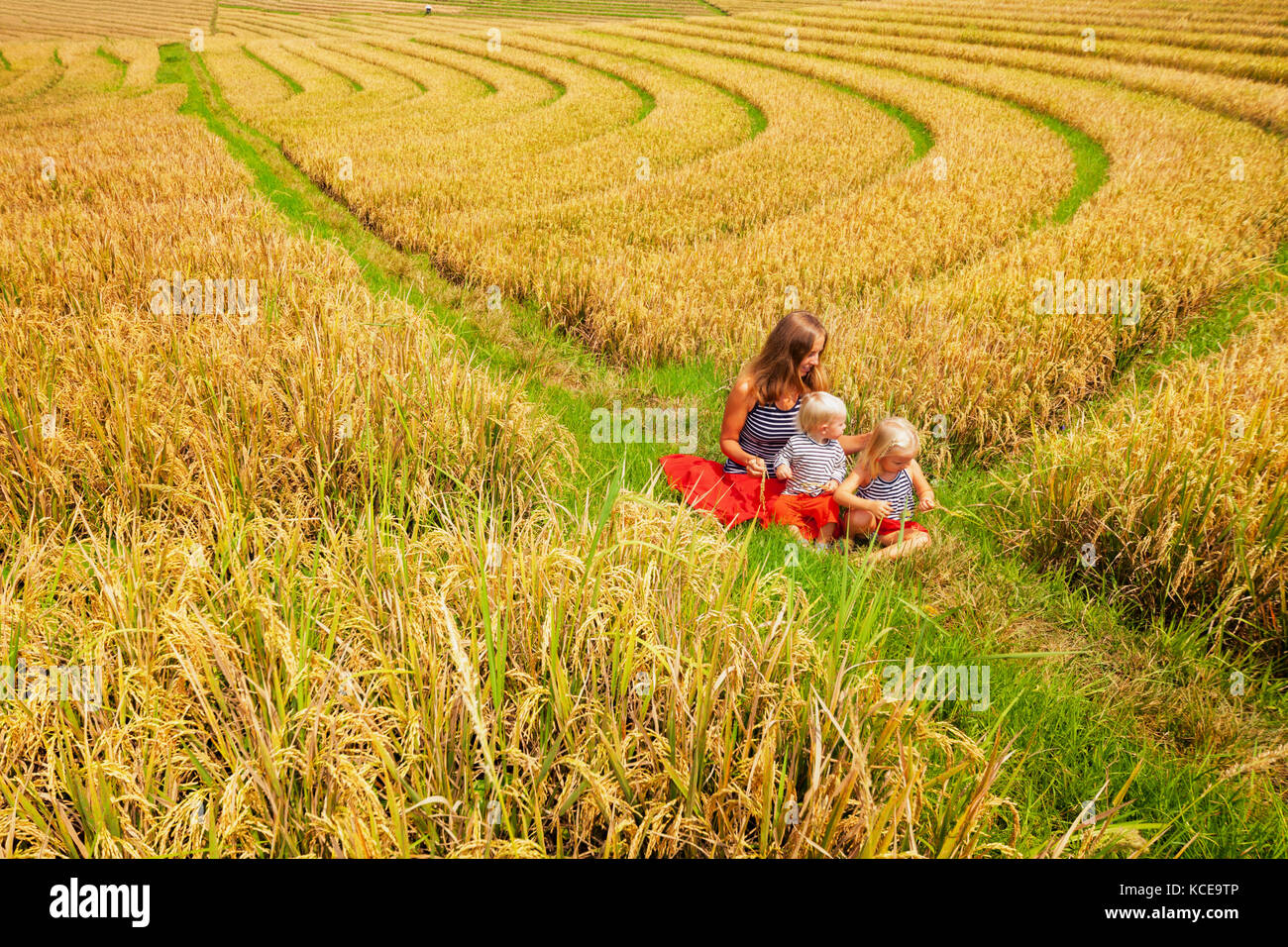 Happy mother, daughter, baby son walk with fun in terrace plantation with growing rice. Beautiful view of traditional - Stock Image
