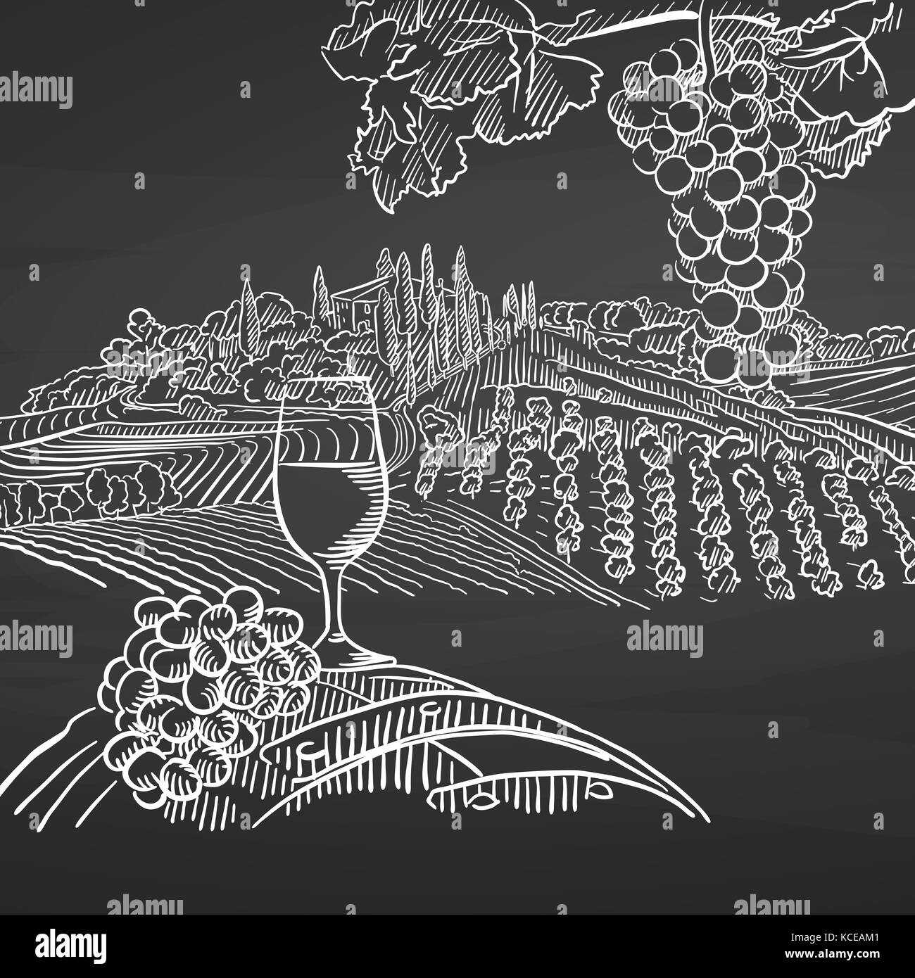 Vintage wine and landscape on chalkboard. Hand drawn healthy food sketch. Black and White Vector Drawing on Blackboard. Stock Photo